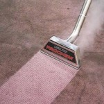 How often should my carpets be cleaned?